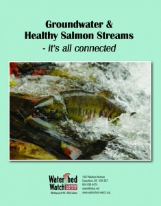 Cover of Groundwater & Healthy Salmon Stream - It's all connected