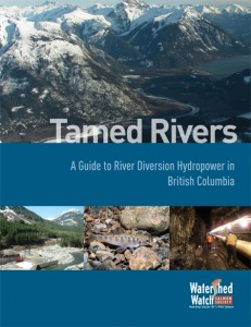Tamed Rivers report cover