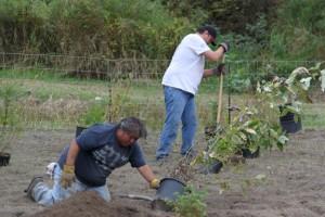Kwikwetlem planting project