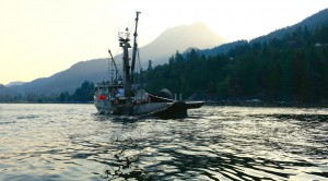 Seine Boat in Howe Sound Fishing Aug 12, 15