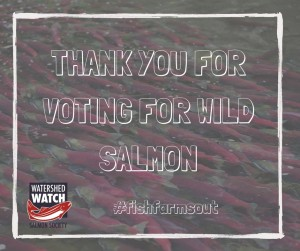 Thank you for voting for wild salmon