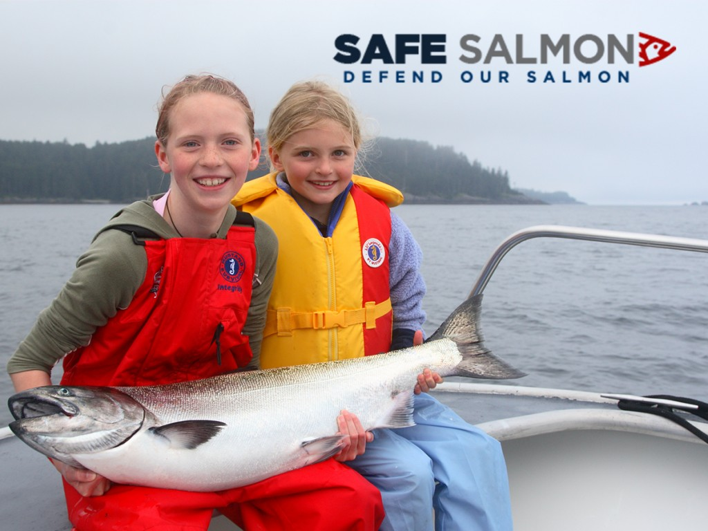 Safesalmon_kids_logo_900x1200