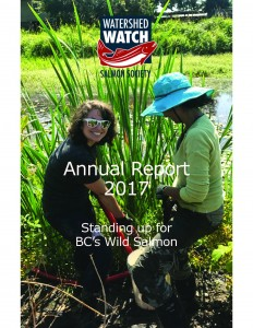 annual report 2017 cover1